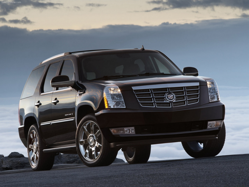 Picture of 2009 Cadillac Escalade, exterior