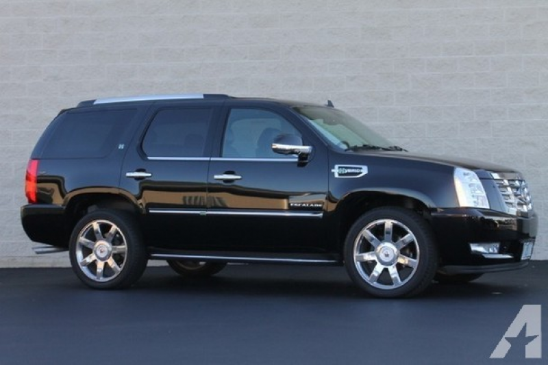 2010 Cadillac Escalade Hybrid for sale in Palatine, Illinois